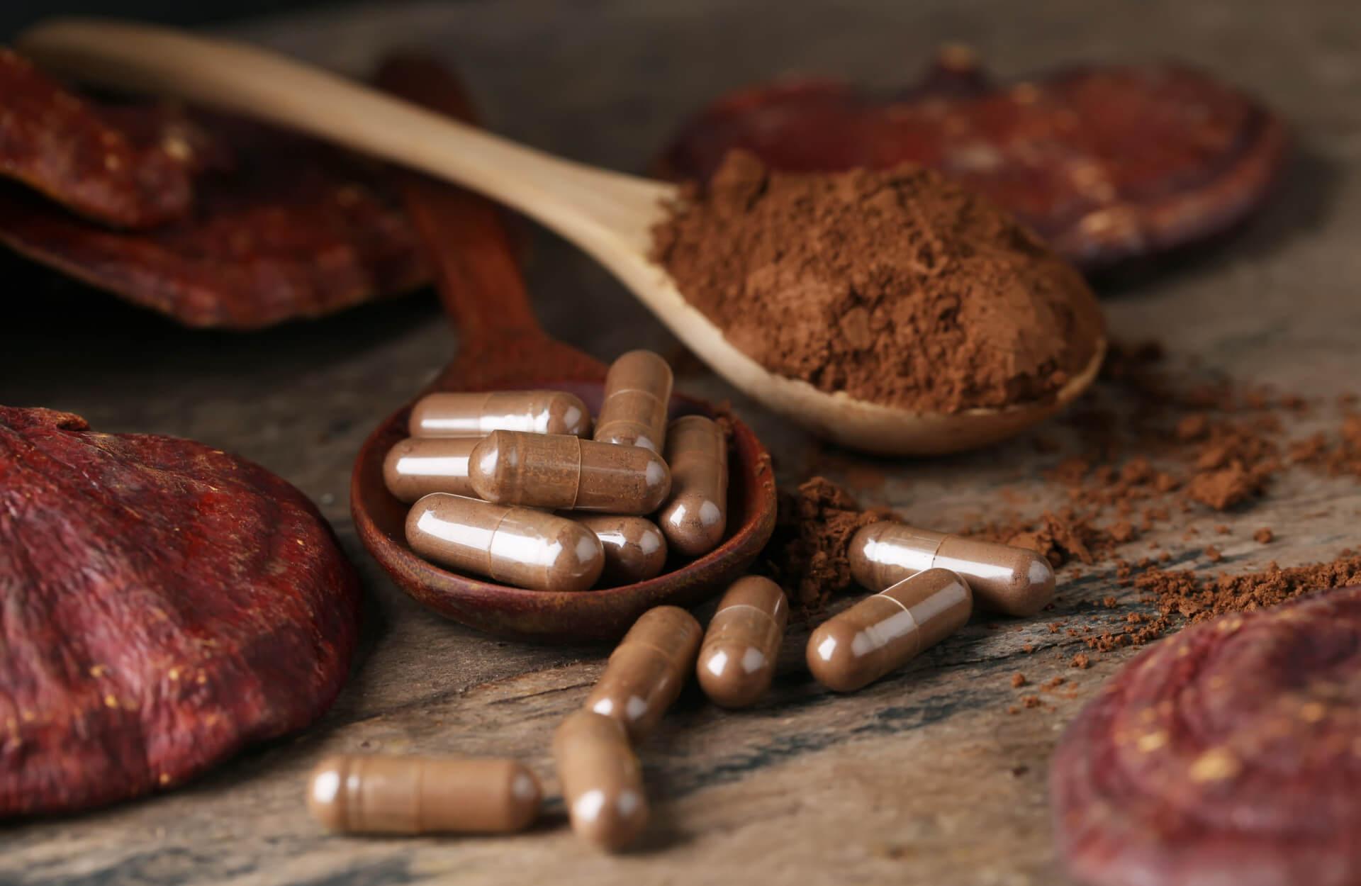 Vitalpilze zeichnen sich durch ihre positive Wirkung auf unsere Gesundheit aus. Mehr dazu in diesem Artikel.